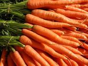 Продам морковь в Павлодаре